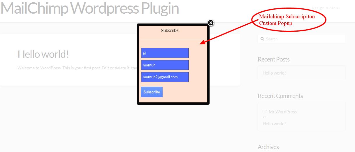 Wordpress Mailchimp Subscription Plugin - 9