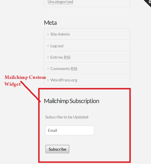 Wordpress Mailchimp Subscription Plugin - 11